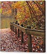 Monet's Trail Acrylic Print by Debra and Dave Vanderlaan