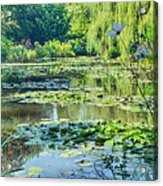 Monet's Water Lily Garden Acrylic Print
