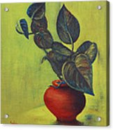 Money Plant - Still Life Acrylic Print