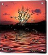 Money Tree Sunset Acrylic Print