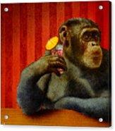 Monkey Bars...she Said... Acrylic Print