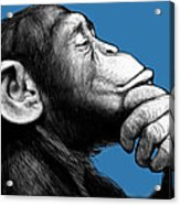 Monkey Pop Art Drawing Sketch Acrylic Print