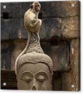 Monkey Sitting Perched On Buddha Head Acrylic Print