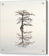 Monochromatic Morning On Lake Mattamuskeet  Two Acrylic Print