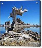 Mono Lake 5709 Acrylic Print