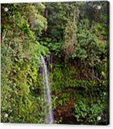 Montagne D'ambre National Park Madagascar 5 Acrylic Print