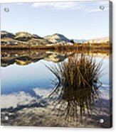 Montana Reflections Acrylic Print by Dana Moyer