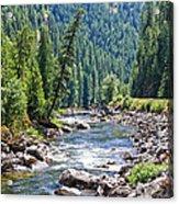Montana River And Trees Acrylic Print
