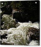 Montana River Rapids Acrylic Print by Yvette Pichette