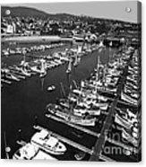 Monterey Marina With Fishing Boats In Slips Sept. 4 1961  Acrylic Print