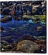 Monterey Pool Acrylic Print