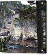 Monterey Rock Pines And Cypress Acrylic Print