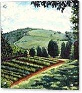 Monticello Vegetable Garden Acrylic Print