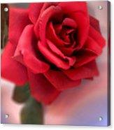 Mood Floral  Acrylic Print
