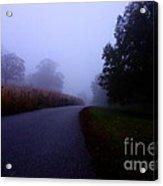 Moody Autumn Pathway Acrylic Print