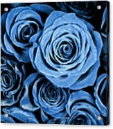 Moody Blue Rose Bouquet Acrylic Print