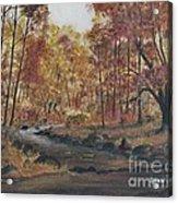 Moody Woods In Fall Acrylic Print