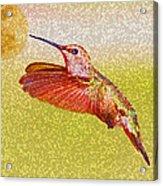 Moon Over Hummingbird Acrylic Print