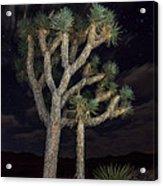 Moon Over Joshua - Joshua Tree National Park In California Acrylic Print