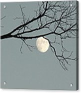 Moon Peaking Thru At 5pm Acrylic Print