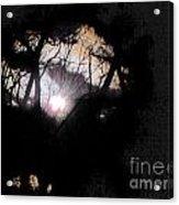 Moon Rays Acrylic Print by Sharon Costa
