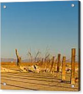 Moon Rise Over Waste Land Acrylic Print