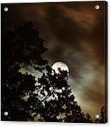 Moon Show Acrylic Print by Ella Char