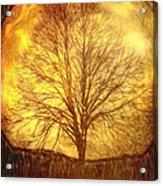 Moon Tree Acrylic Print