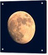 Moonful Acrylic Print