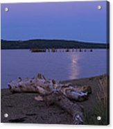 Moonlight At The Beach Acrylic Print