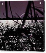 Moonlight Fisherman Acrylic Print by Christy Usilton