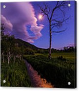 Moonlight Meadow Acrylic Print by Chad Dutson