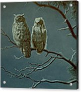 Moonlight Watchers Acrylic Print by Paul Krapf