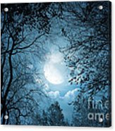 Moonlight With Forest Acrylic Print by Boon Mee