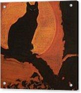 Moonlighting Cat Acrylic Print