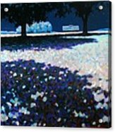 Moonlit Acres Acrylic Print
