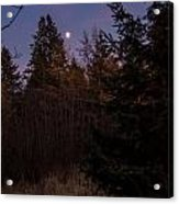Moonlit Evening Acrylic Print