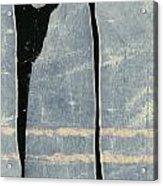 Moonlit Sentinels Acrylic Print