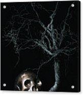 Moonlit Skull And Tree Still Life Acrylic Print by Tom Mc Nemar