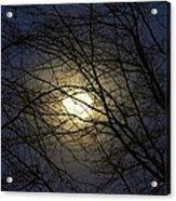 Moonshine Acrylic Print
