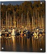 Moored Sailboats Acrylic Print