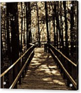 Moores Creek Battlefield  Nc Swam Bridge  Acrylic Print