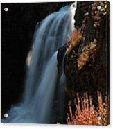 Moose Falls Acrylic Print