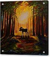 Moose Hideout Acrylic Print