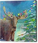 Moosey Christmas Acrylic Print