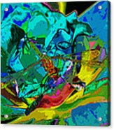 More Dragonfly Art Acrylic Print