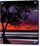 Moreton Bay View Acrylic Print