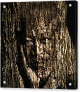 Morgan Freeman Roots Digital Painting Acrylic Print by Georgeta Blanaru