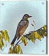 Morning Bird Acrylic Print
