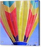 Morning Flight Acrylic Print